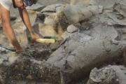 Археологи обнаружили винодельню библейского Навуфея